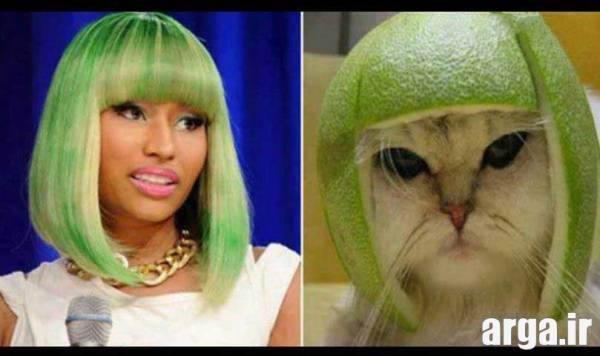 سبز خنده دار