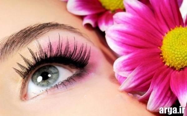 ساهی چشم زیبا هماهنگ با رنگ گل ها