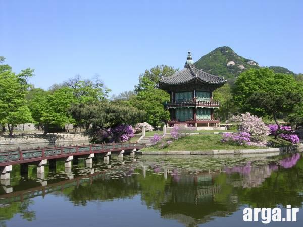 چئونگ بوک در سئول