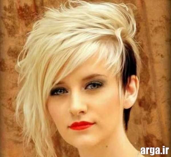 Hairdressing short (14)