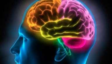 تمرین افزایش ضریب هوش