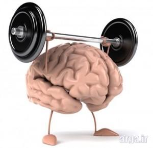 عملکرد مغز و هوش کودکان