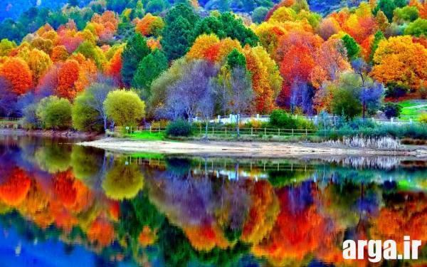 طبیعت رنگی