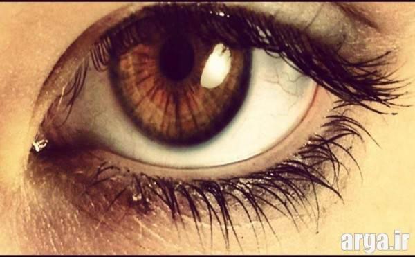 make up eye (4)