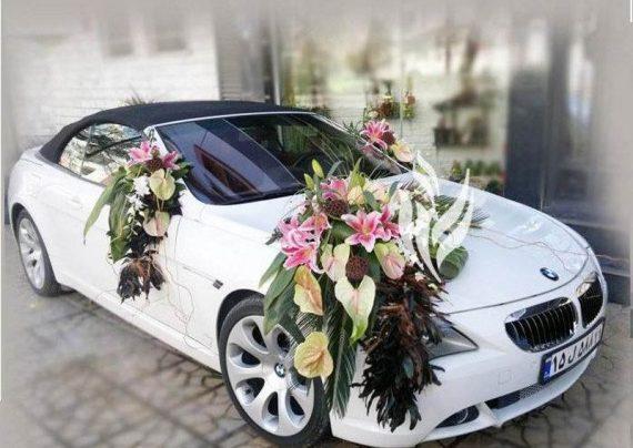 مدل های ماشین عروس