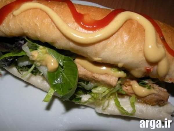 ساندویچ مرغ با سس