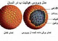 بیماری هپاتیت B