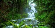 تصاویر عجایب طبیعت