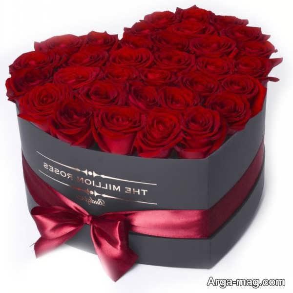 تصویری از گل رز سرخ