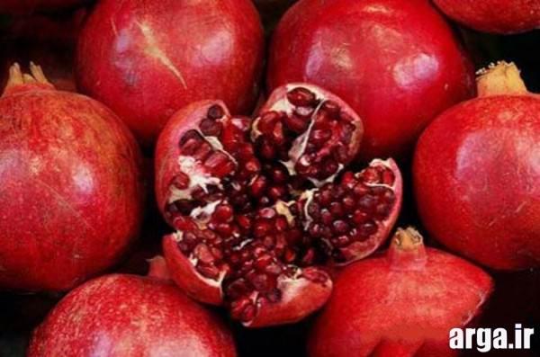 میوه آرایی انار