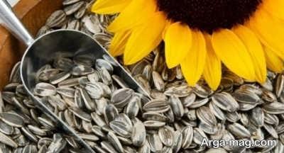 بررسی فواید بی نظیر تخمه آفتاب گردان