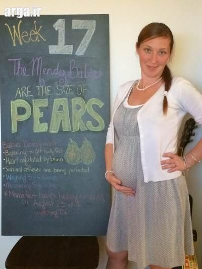 تقویم بارداری و هفته هفدهم