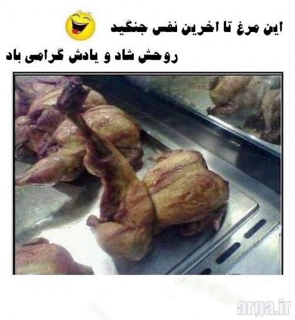 مرغ سوخاری خنده دار