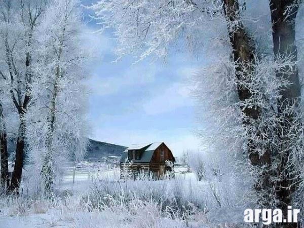 منظره برفی طبیعی