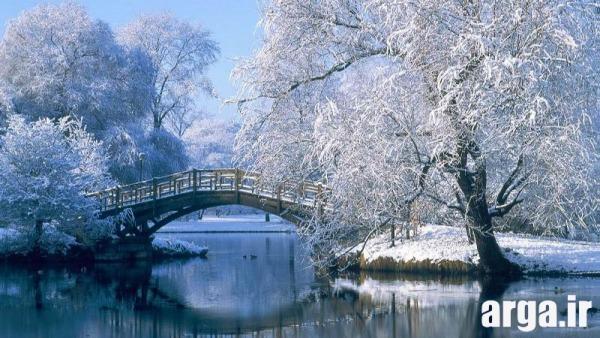 پل رویایی در منظره برفی