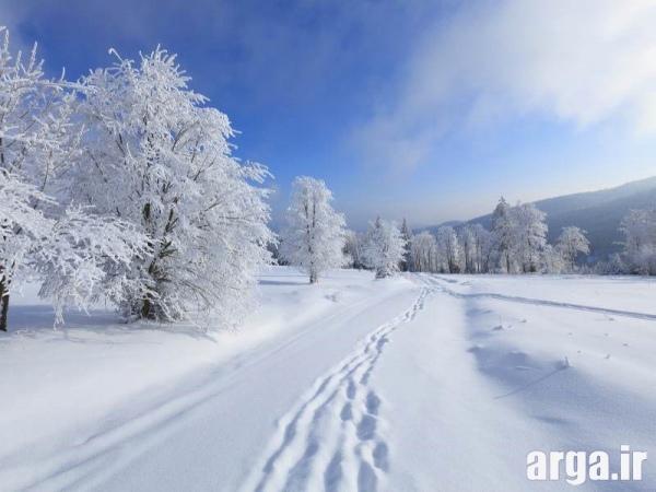 عکس منظره برفی دوست داشتنی