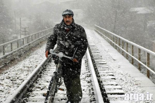 تنابنده در برف