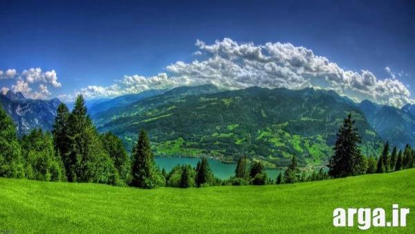 دشت سر سبز در تصاویر طبیعت زیبا
