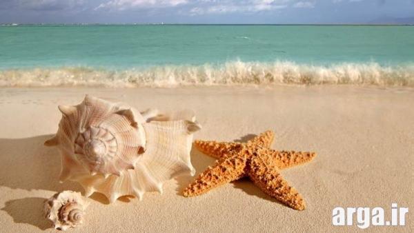 طبیعت دریا