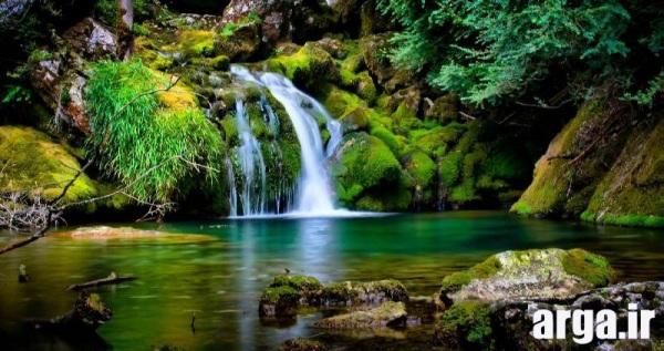 طبیعت آبشار