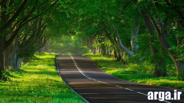 زیباترین تصاویر طبیعت جاده