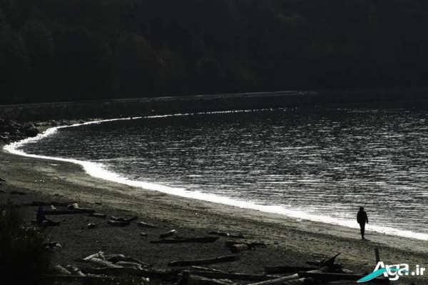 تنهایی کنار دریا