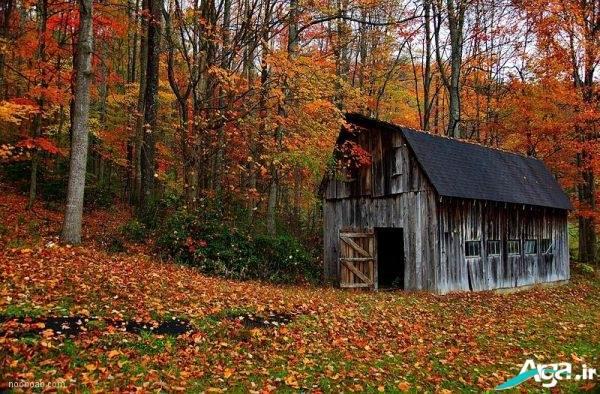 عکس های پاییزی