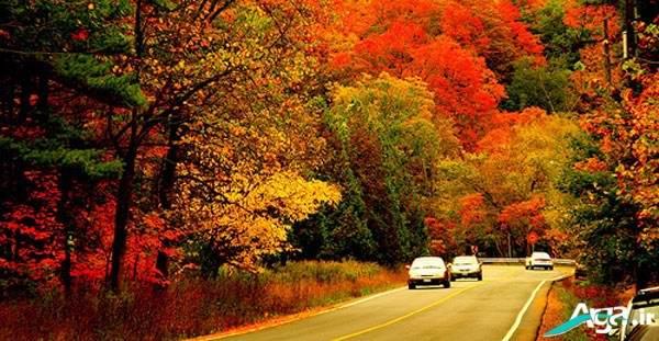 Photos autumn (17)
