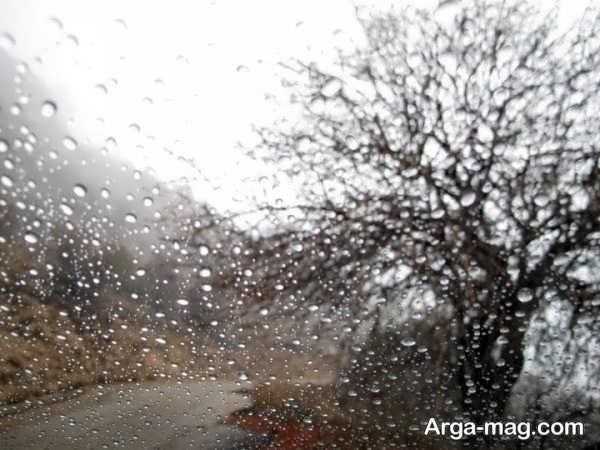 گالری عکسهای طبیعت بارانی