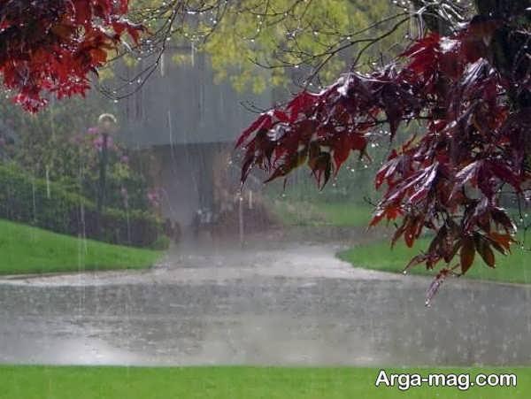 عکس منظره بارانی متفاوت