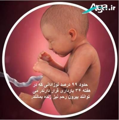جنین در بارداری