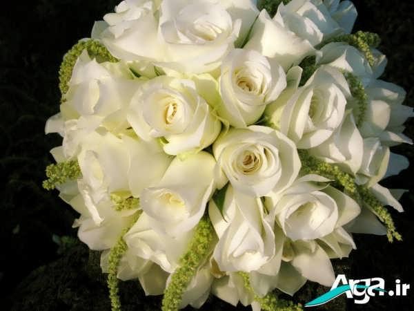 دسته گلی از رز سفید زیبا