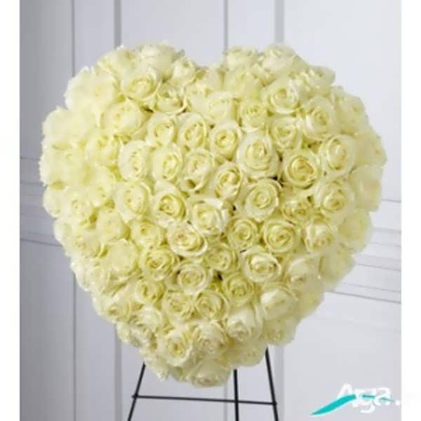 پایه گل رز سفید
