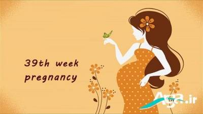 تقویم بارداری