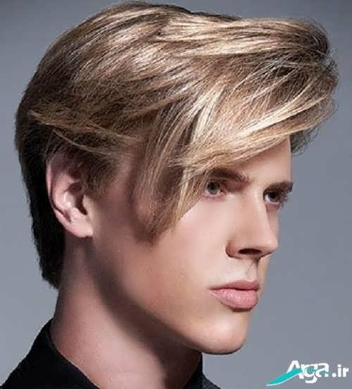مدل موی خامه ای ویژه آقایان