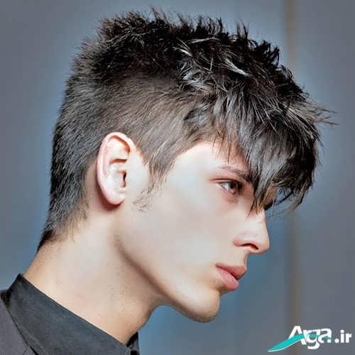 مدلموی خامه ای ویژه پسران ایرانی