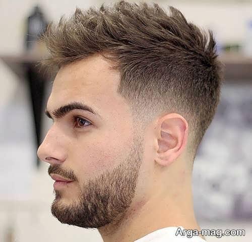کوتاهی مو خامه ای