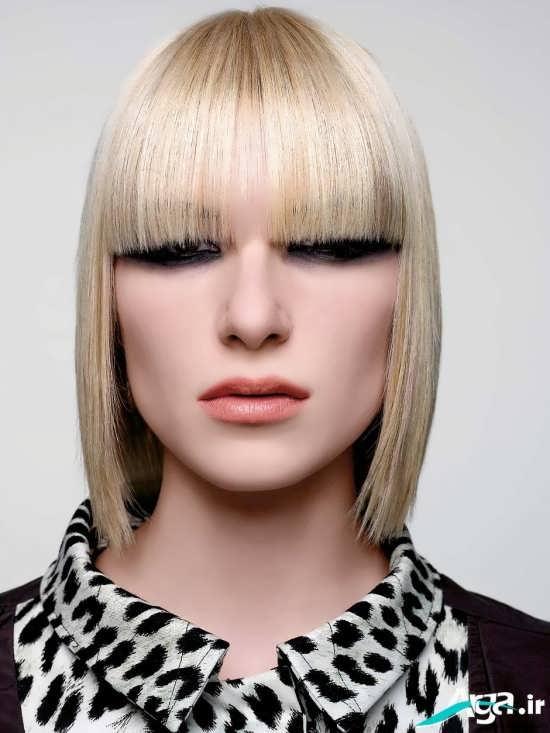 موی مصری