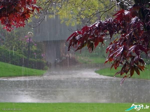 عکس منظره باران پاییزی