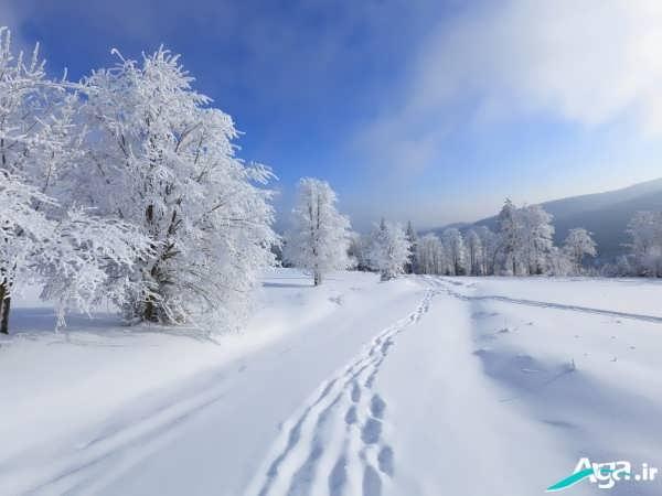 عکس های طبیعت در زمستان