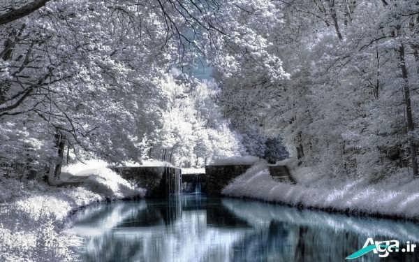 عکس جدید طبیعت زمستانی
