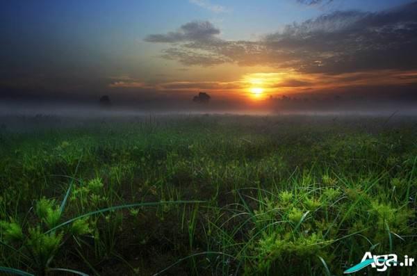 منظره غروب خورشید