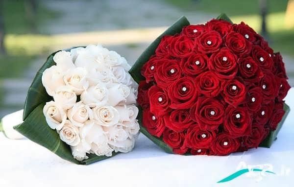 عکس دو دسته گل رز