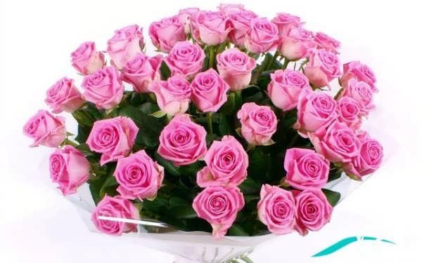عکسی از دسته گل رز