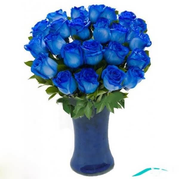 دسته گل های رز آبی زیبا