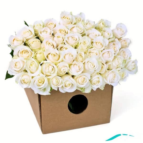 دسته گل رز سفید ناب