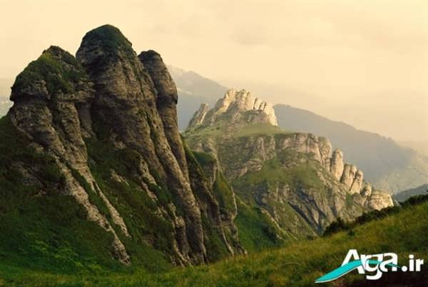 کوه ها و گیاهان کوهی