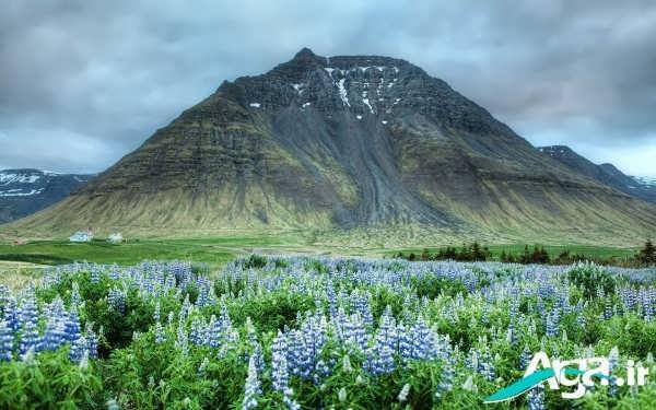 کوه های مختلف جهان