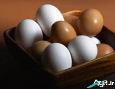 بررسی انواع خواص تخم مرغ