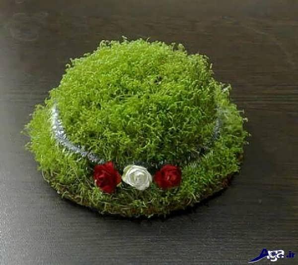 سبزه با خاکشیر